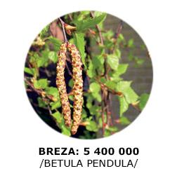 1-breza