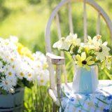 letnje alergije