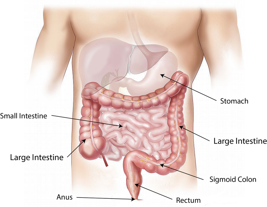 dijagnoza celijakije