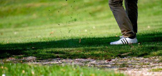 alergija na polen trava