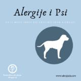 alergije i psi